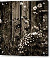 English Garden Noir Acrylic Print