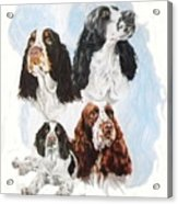 English Springer Spaniel W/ghost Acrylic Print