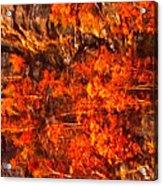 Enigma Orange Acrylic Print