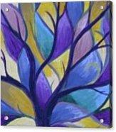 Enlighten Acrylic Print