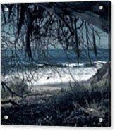 Entangled Dreams Acrylic Print