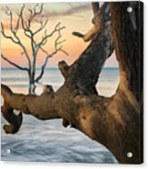 Charleston South Carolina Boneyard Beach Sunrise Scene  Acrylic Print