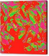 Epiphany 16 Acrylic Print