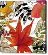 Equinox I Acrylic Print