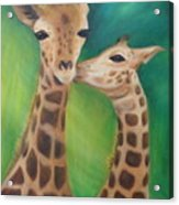 Erina's Giraffes Acrylic Print