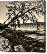Erosion - Anselized Acrylic Print