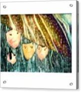 Escape From The Rain Acrylic Print