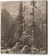 Essais De Gravure ? L'eau Forte Par Alexandre Calame, I, Pl. 21 Acrylic Print