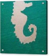 Essance Of The Sea Acrylic Print