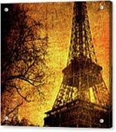 Esthetic Luster Acrylic Print