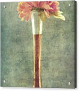 Estillo Vintage Textured Acrylic Print
