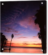 Estuary At San Jose Del Cabo Acrylic Print