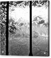 Etched In Glass Acrylic Print