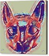 Eternal Cats Acrylic Print