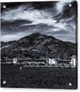 Eternal Sky Acrylic Print
