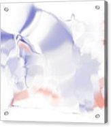 Ethereal Acrylic Print