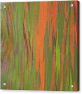 Eucalyptus Abstract Acrylic Print