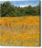 Eufaula Meadow Acrylic Print