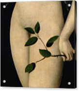 Eve Acrylic Print by The Elder Lucas Cranach