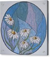 Even Daisies Get The Blues Acrylic Print