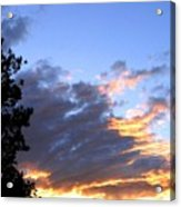 Evening Color Acrylic Print