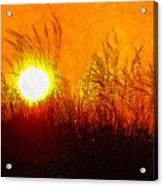 Evening Dunes Impasto Acrylic Print