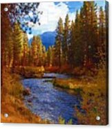 Evening Hatch On The Metolius River Painting 2 Acrylic Print by Diane E Berry