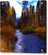Evening Hatch On The Metolius River Photograph Acrylic Print by Diane E Berry