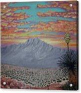 Evening in the Desert Acrylic Print