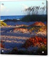 Evening Light At The Beach Acrylic Print