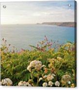 Evening Light In Cornwall Acrylic Print