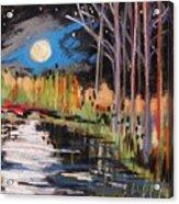 Evening Near The Pond Acrylic Print by John Williams