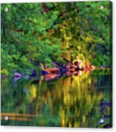 Evening On The Humber River - Paint Acrylic Print