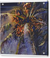 Evening Palm Acrylic Print