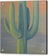 Evening Saguaro Acrylic Print