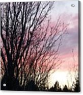 Evening Sky - October 27 Acrylic Print