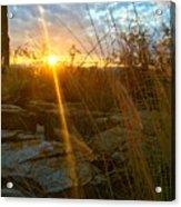 Evening Sun Rays In The Desert Acrylic Print