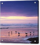 Evening Tide Reflections Acrylic Print
