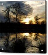 Everglade View Acrylic Print