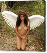 Everglades City Fl. Professional Photographer 4176 Acrylic Print