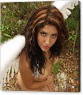Everglades City Fl. Professional Photographer 4179 Acrylic Print