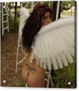 Everglades City Fl. Professional Photographer 4193 Acrylic Print