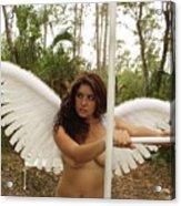 Everglades City Fl.professional Photographer 4190 Acrylic Print