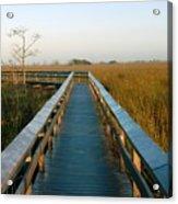 Everglades National Park Acrylic Print