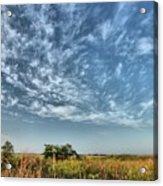 Everglades Sky Acrylic Print