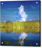 Everglades Smoke Acrylic Print