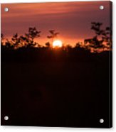 Everglades Sunset 1 Acrylic Print
