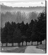 Evergreen Mist Acrylic Print