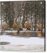 Evergreen Reflection Acrylic Print
