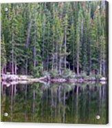 Evergreen Reflections Acrylic Print